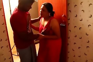 Tamil Aunty Seduced At the end of one's tether Plumber