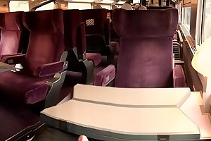 Im Zug (TGV) gewichst - Wank wide Train